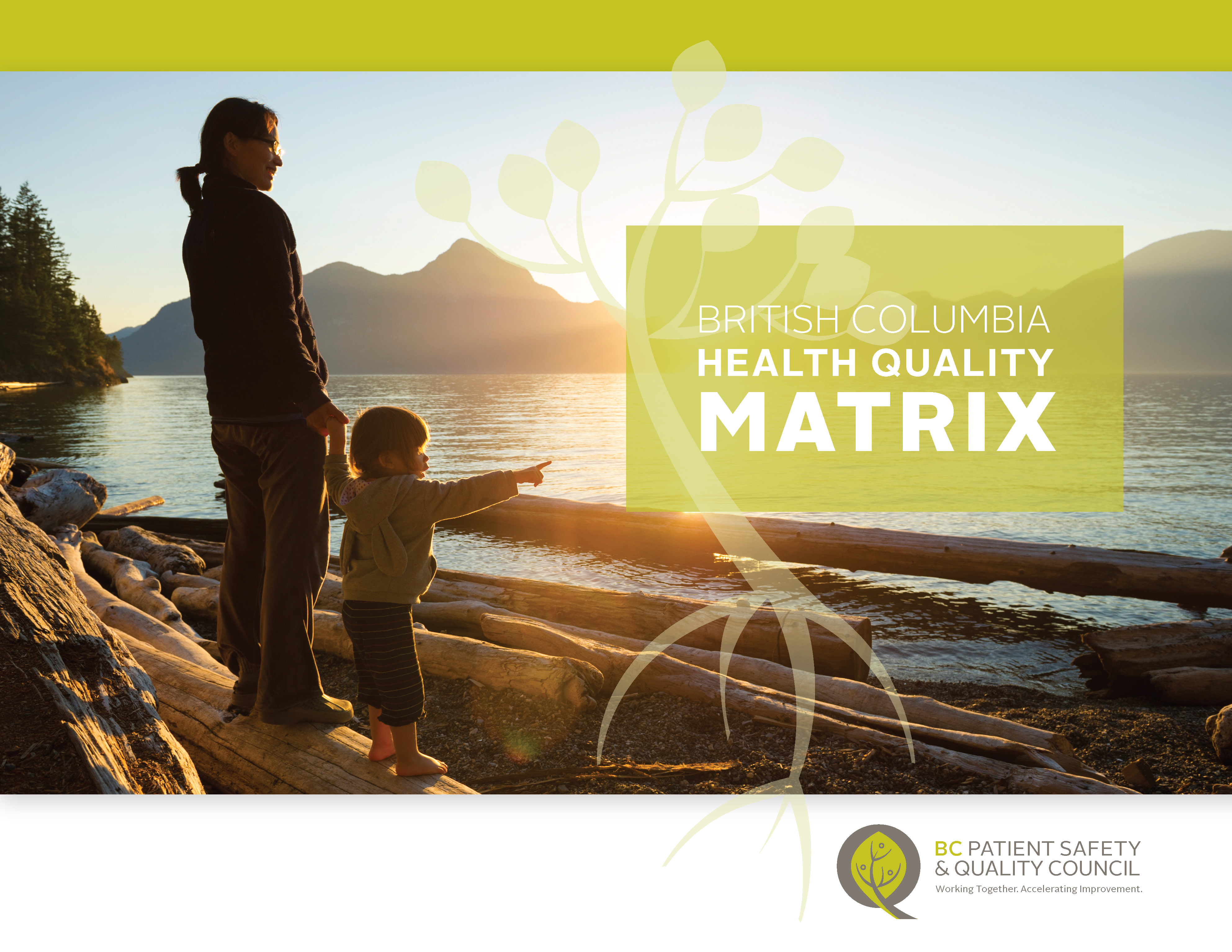 BC Health Quality Matrix