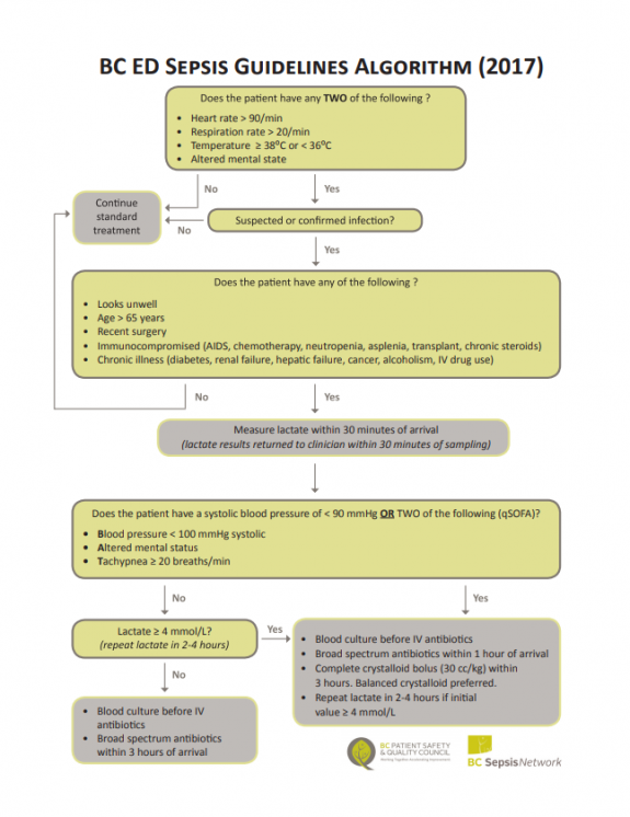 2017 Emergency Department Sepsis Guidelines as an Algorithm
