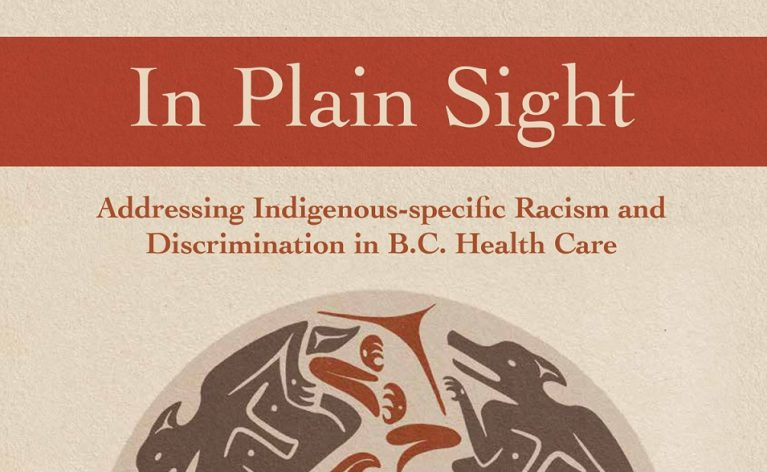 "Our Statement Regarding the ""In Plain Sight"" Report"