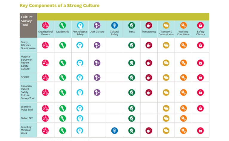 Measuring Culture to Inform Action: A Rapid Literature Review